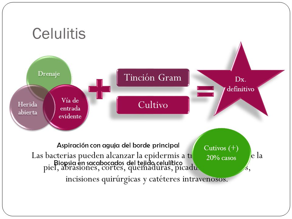 Celulitis Tinción Gram Cultivo