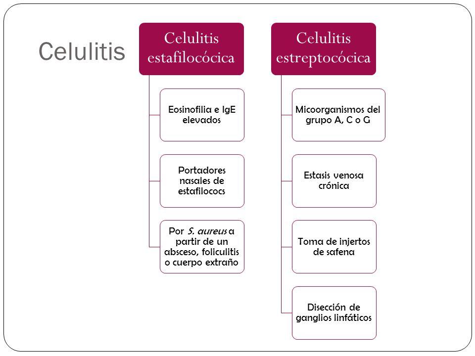 Celulitis Celulitis estafilocócica Celulitis estreptocócica