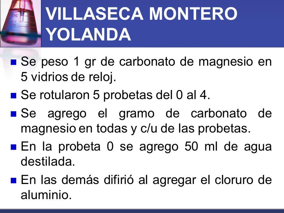 VILLASECA MONTERO YOLANDA