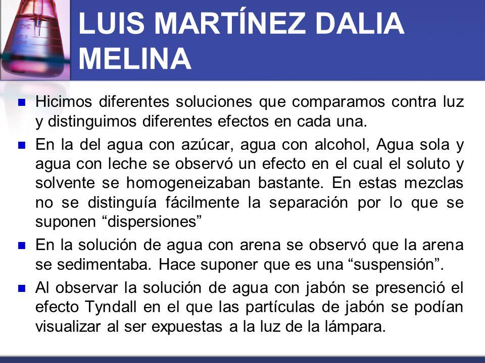 LUIS MARTÍNEZ DALIA MELINA