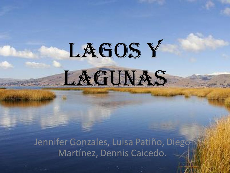 Jennifer Gonzales, Luisa Patiño, Diego Martínez, Dennis Caicedo.