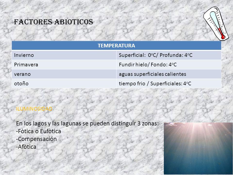 FACTORES ABIOTICOS TEMPERATURA. Invierno. Superficial: 0oC/ Profunda: 4oC. Primavera. Fundir hielo/ Fondo: 4oC.
