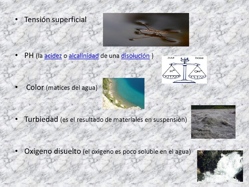 Tensión superficial PH (la acidez o alcalinidad de una disolución ) Color (matices del agua)
