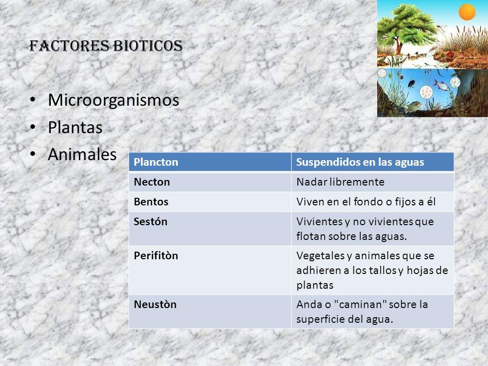 Microorganismos Plantas Animales FACTORES BIOTICOS Plancton