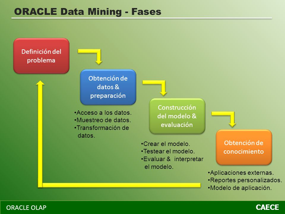 ORACLE Data Mining - Fases