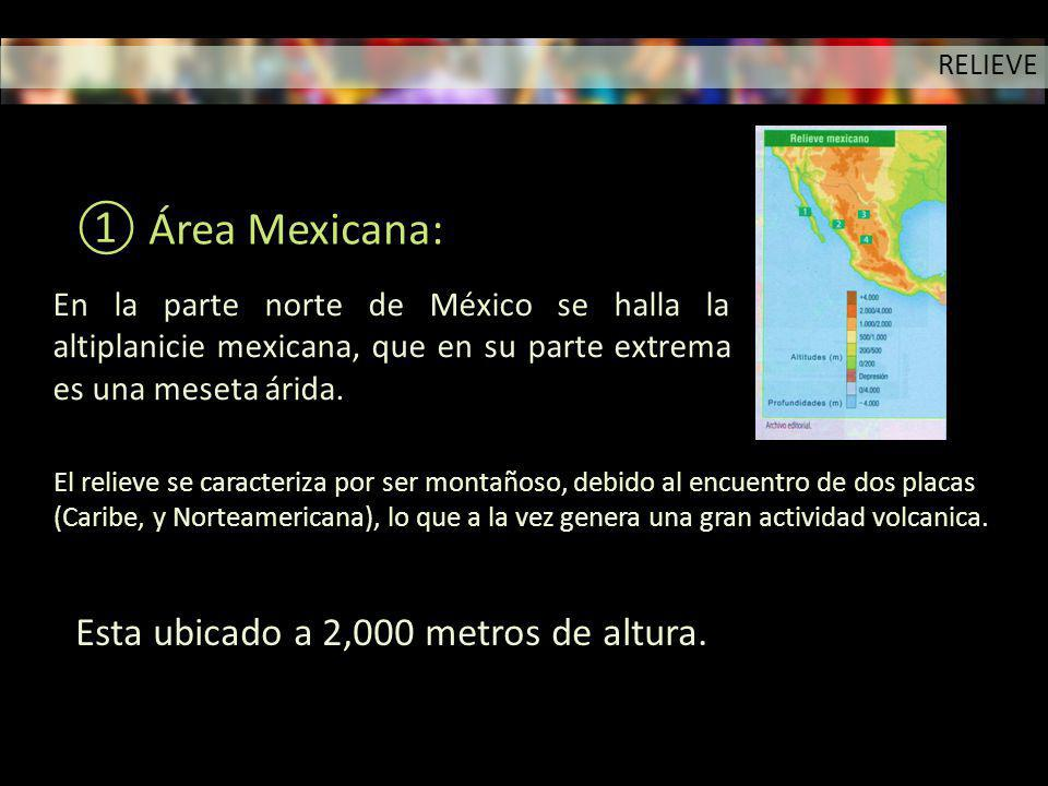 Área Mexicana: Esta ubicado a 2,000 metros de altura.