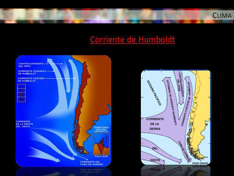 CLIMA Corriente de Humboldt