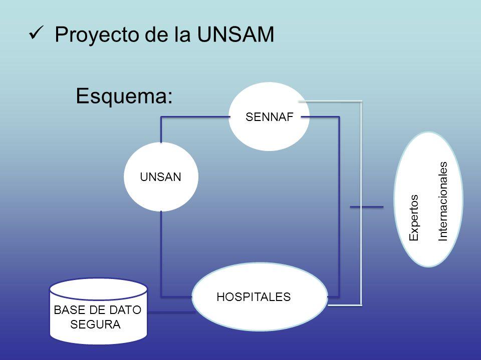 Proyecto de la UNSAM Esquema: SENNAF UNSAN Internacionales Expertos