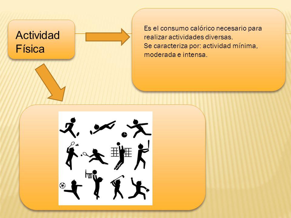 u Es el consumo calórico necesario para realizar actividades diversas. Se caracteriza por: actividad mínima, moderada e intensa.