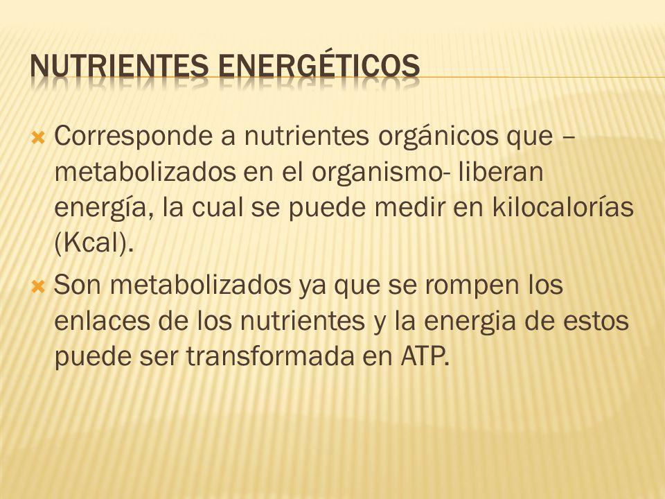 Nutrientes energéticos