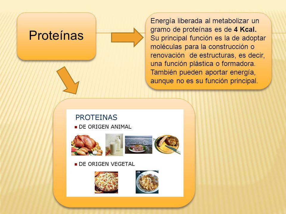Energía liberada al metabolizar un gramo de proteínas es de 4 Kcal.