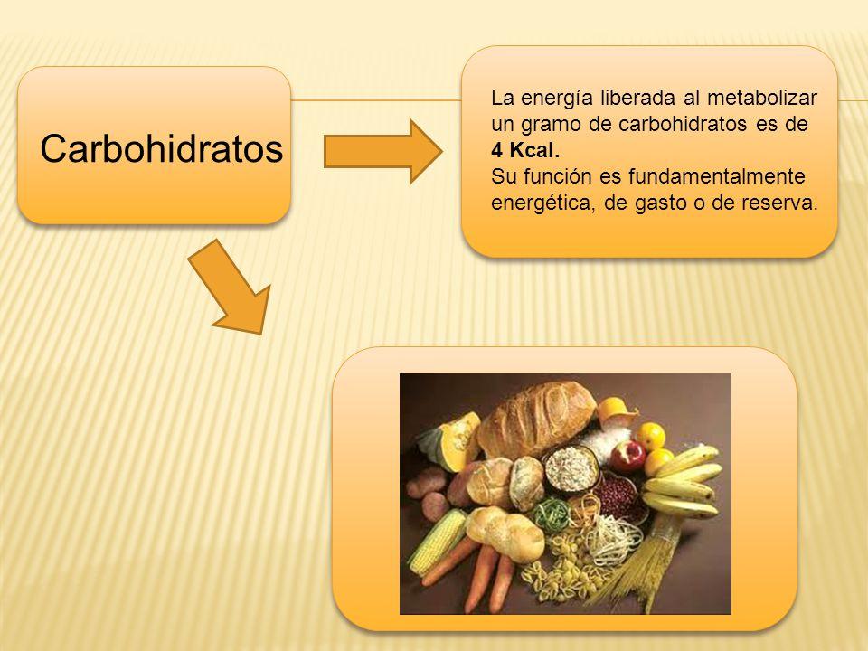 La energía liberada al metabolizar un gramo de carbohidratos es de 4 Kcal.
