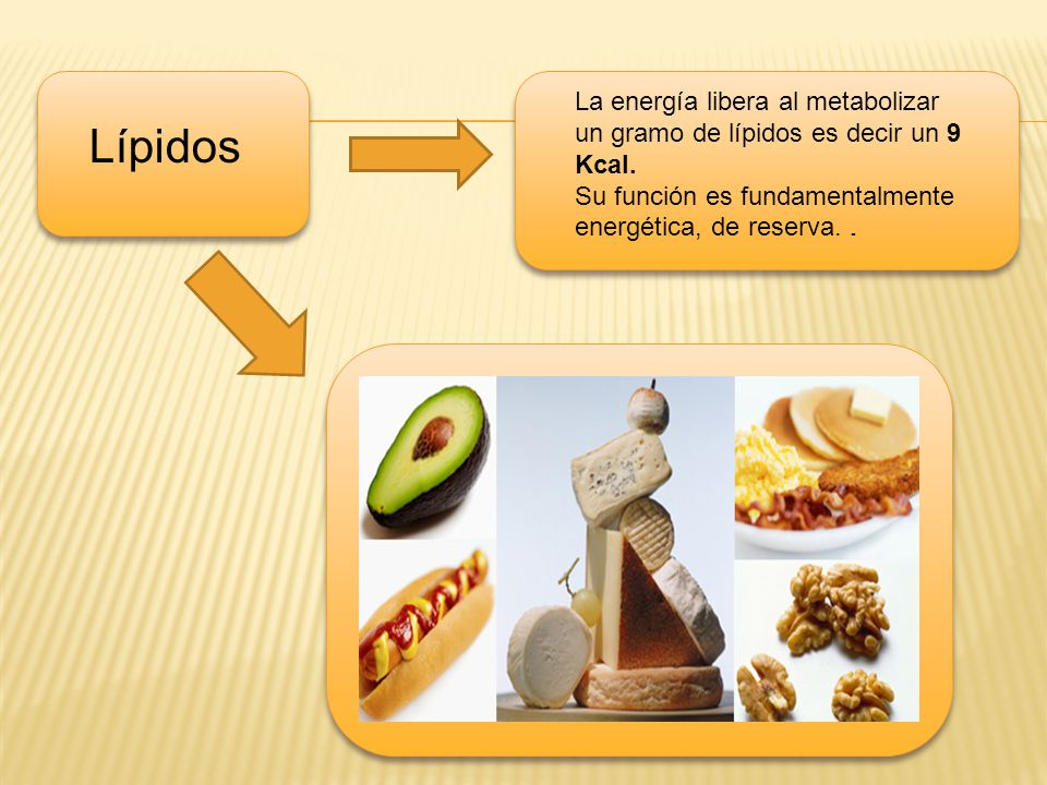 La energía libera al metabolizar un gramo de lípidos es decir un 9 Kcal.
