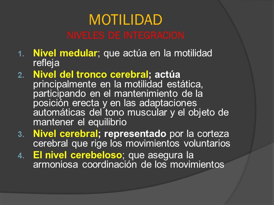 MOTILIDAD NIVELES DE INTEGRACION