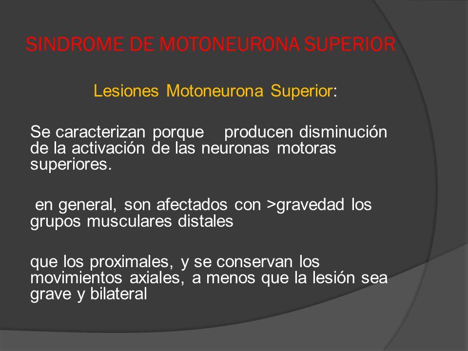 SINDROME DE MOTONEURONA SUPERIOR