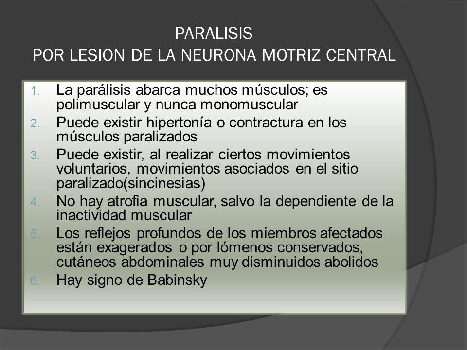 PARALISIS POR LESION DE LA NEURONA MOTRIZ CENTRAL