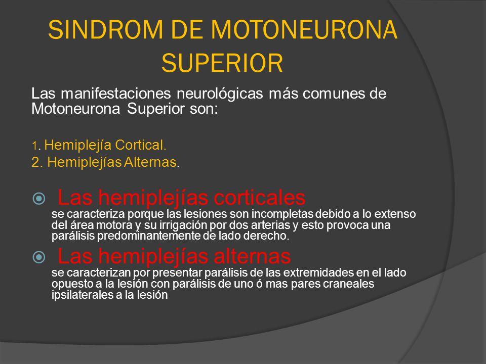SINDROM DE MOTONEURONA SUPERIOR