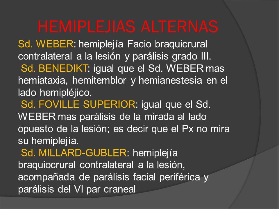 HEMIPLEJIAS ALTERNAS