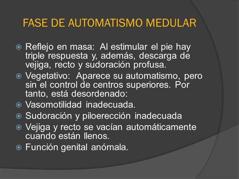 FASE DE AUTOMATISMO MEDULAR