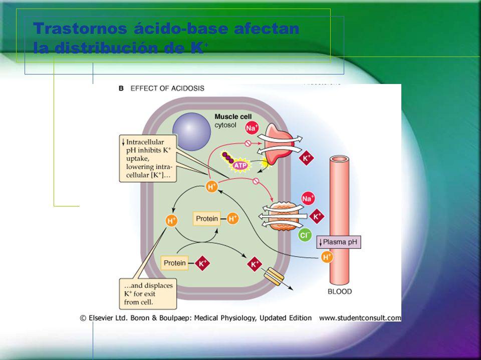 Trastornos ácido-base afectan la distribución de K⁺