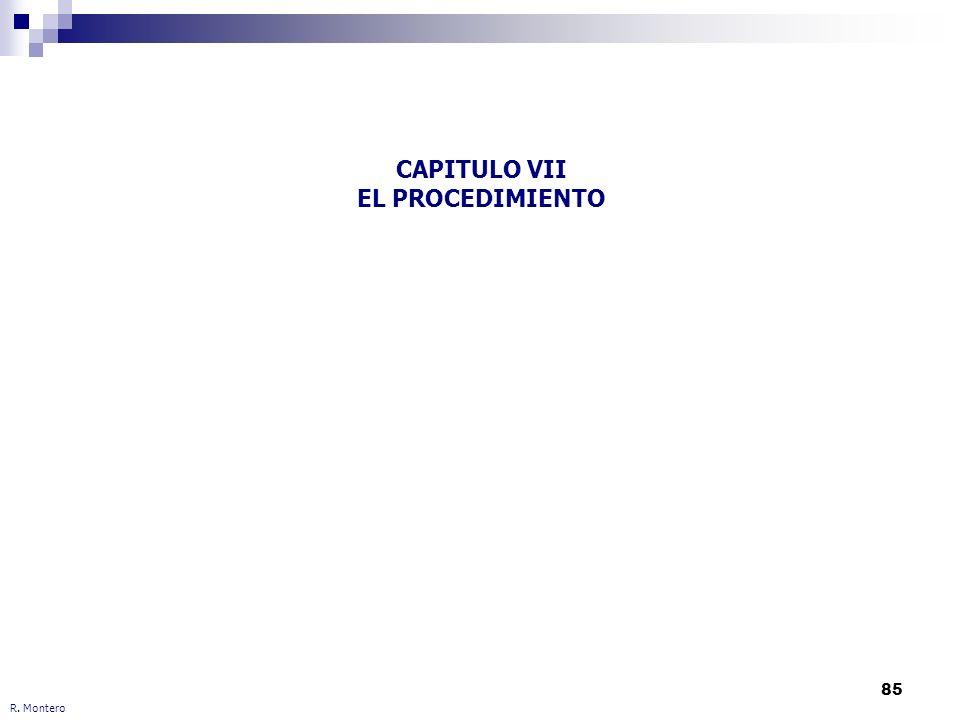 CAPITULO VII EL PROCEDIMIENTO
