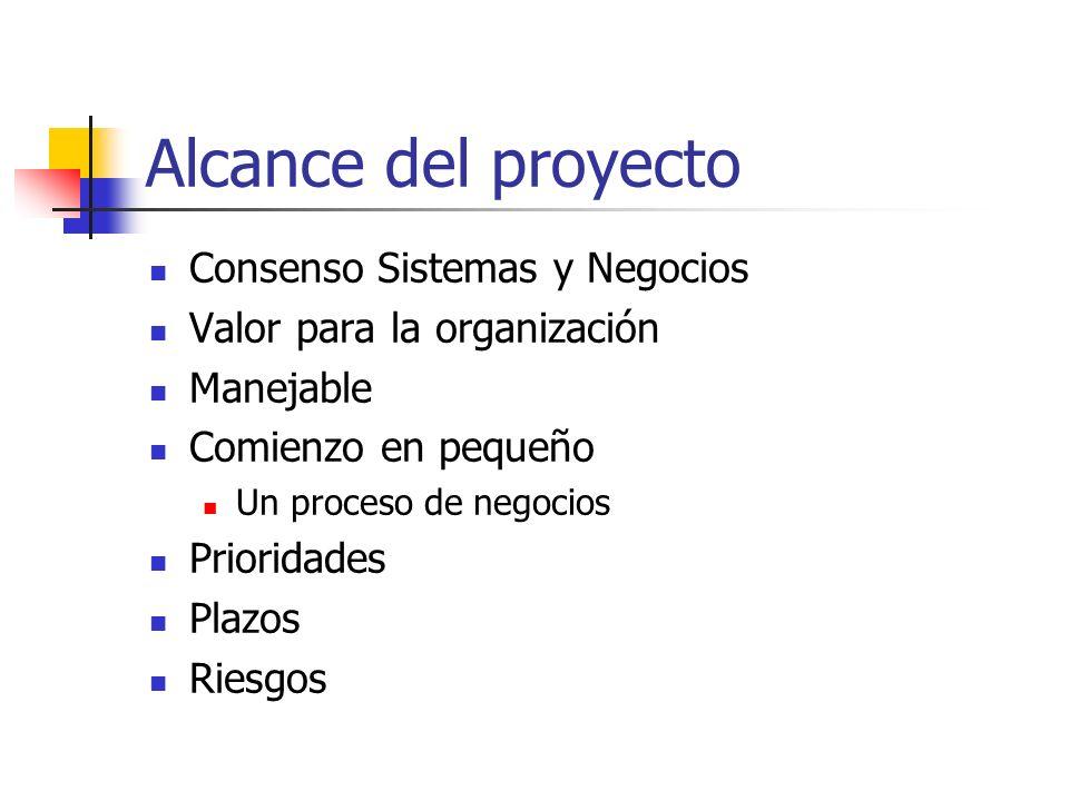 Alcance del proyecto Consenso Sistemas y Negocios