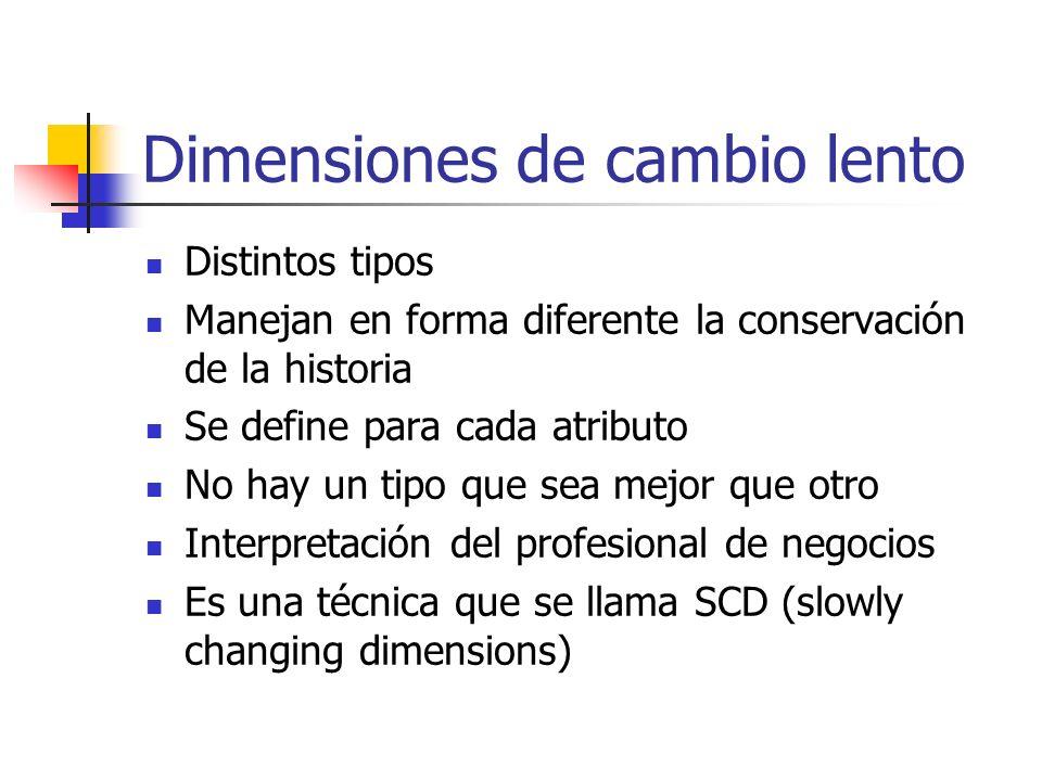 Dimensiones de cambio lento