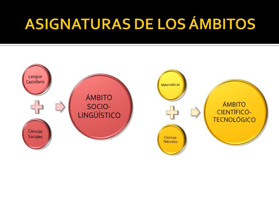 ASIGNATURAS DE LOS ÁMBITOS