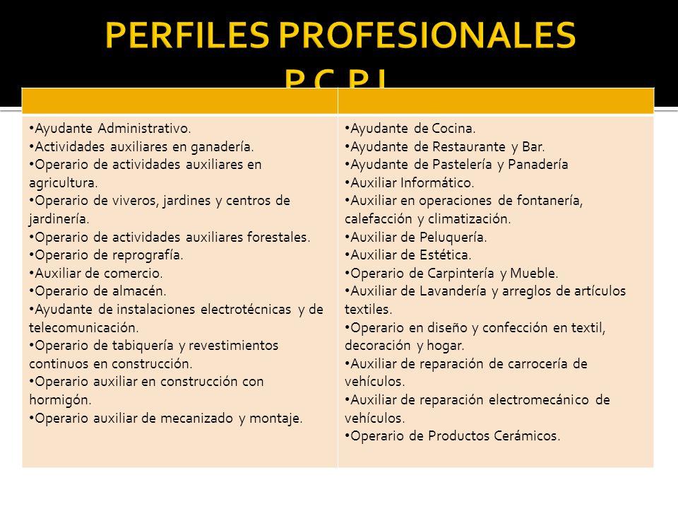 PERFILES PROFESIONALES P.C.P.I.