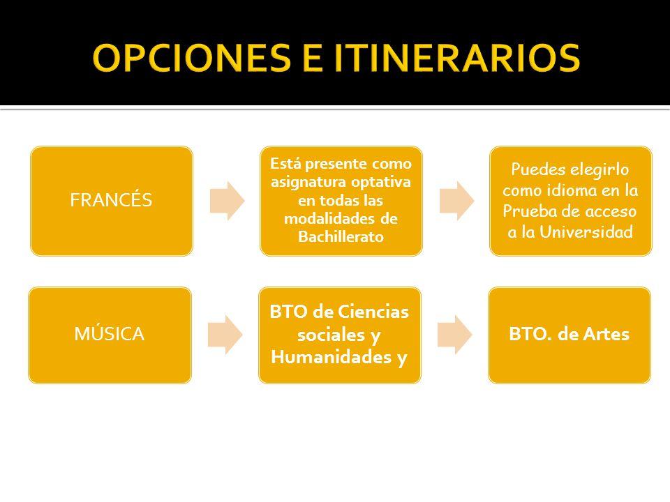 OPCIONES E ITINERARIOS