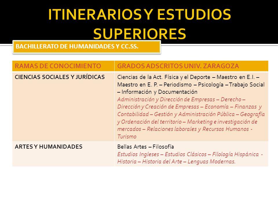 ITINERARIOS Y ESTUDIOS SUPERIORES