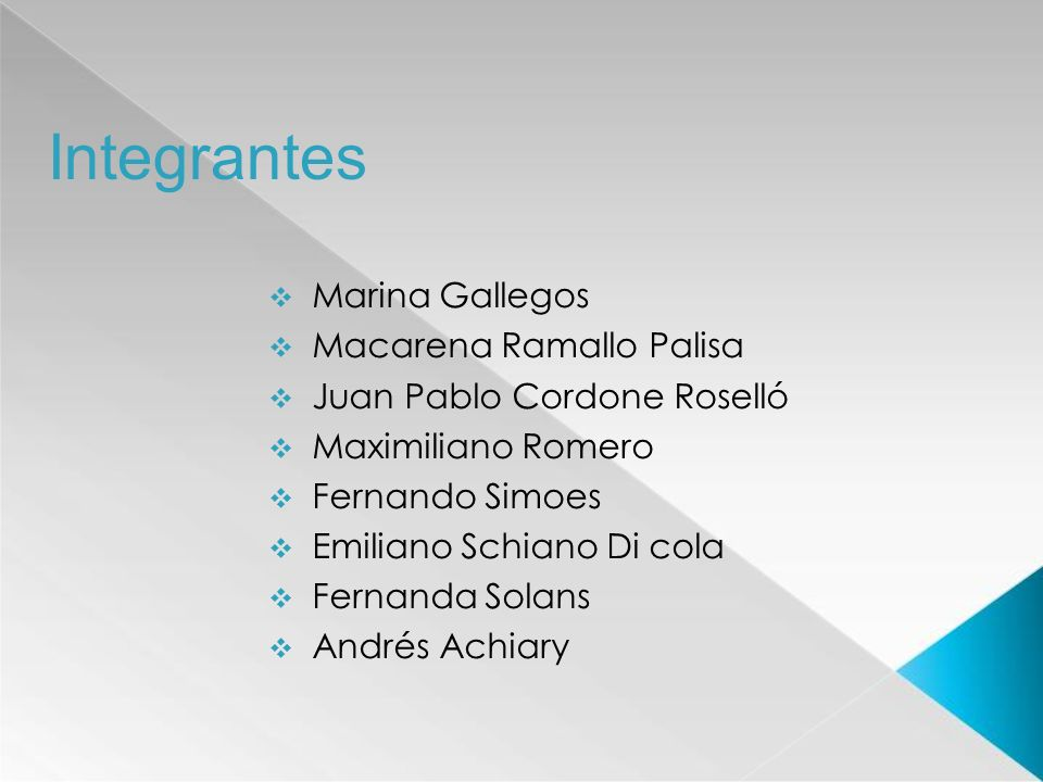 Integrantes Marina Gallegos Macarena Ramallo Palisa