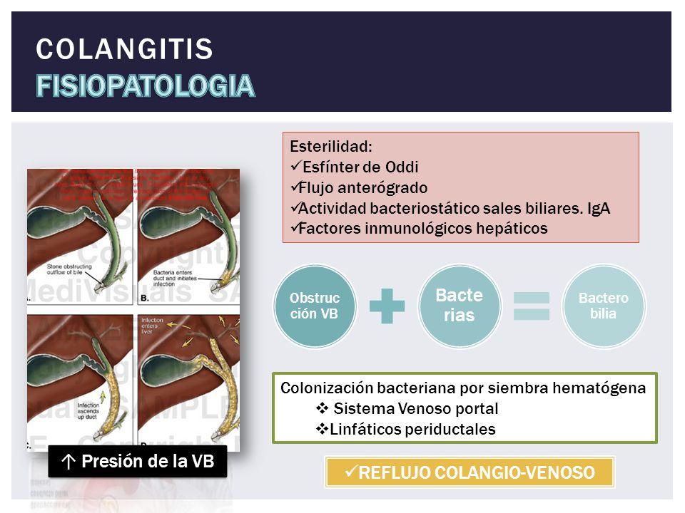 COLANGITIS FISIOPATOLOGIA
