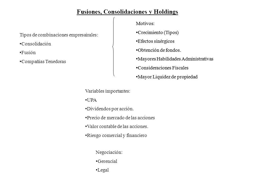 Fusiones, Consolidaciones y Holdings