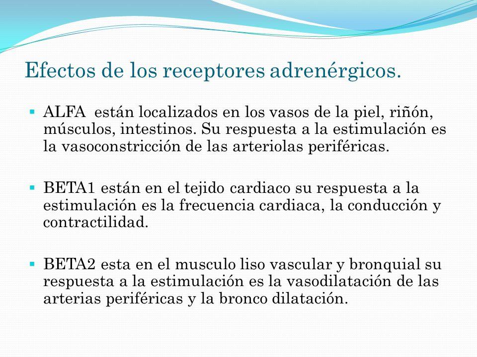 Efectos de los receptores adrenérgicos.