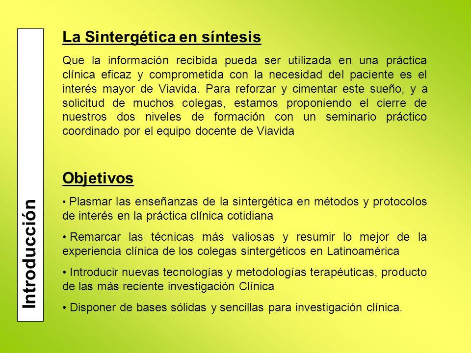 Introducción La Sintergética en síntesis Objetivos