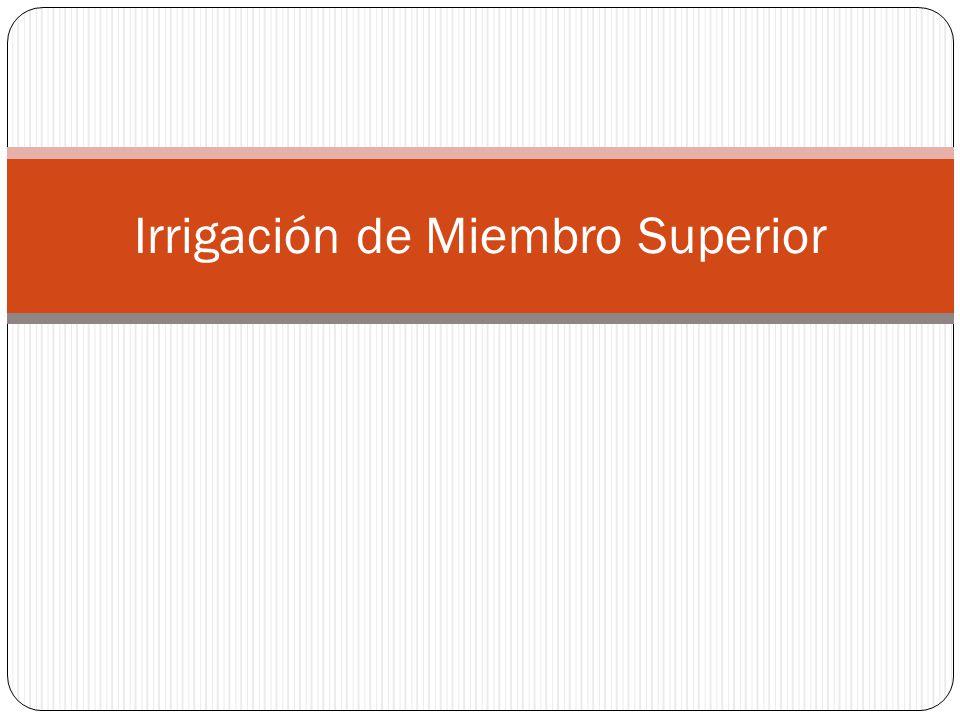 Irrigación de Miembro Superior