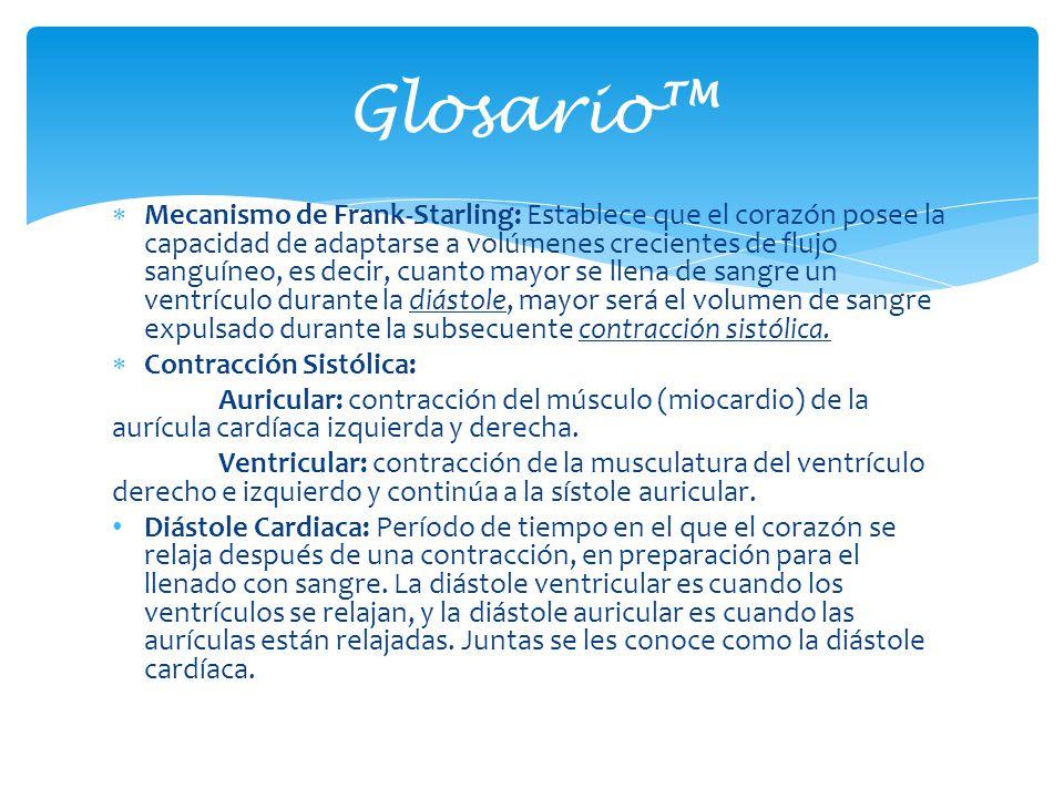Glosario™