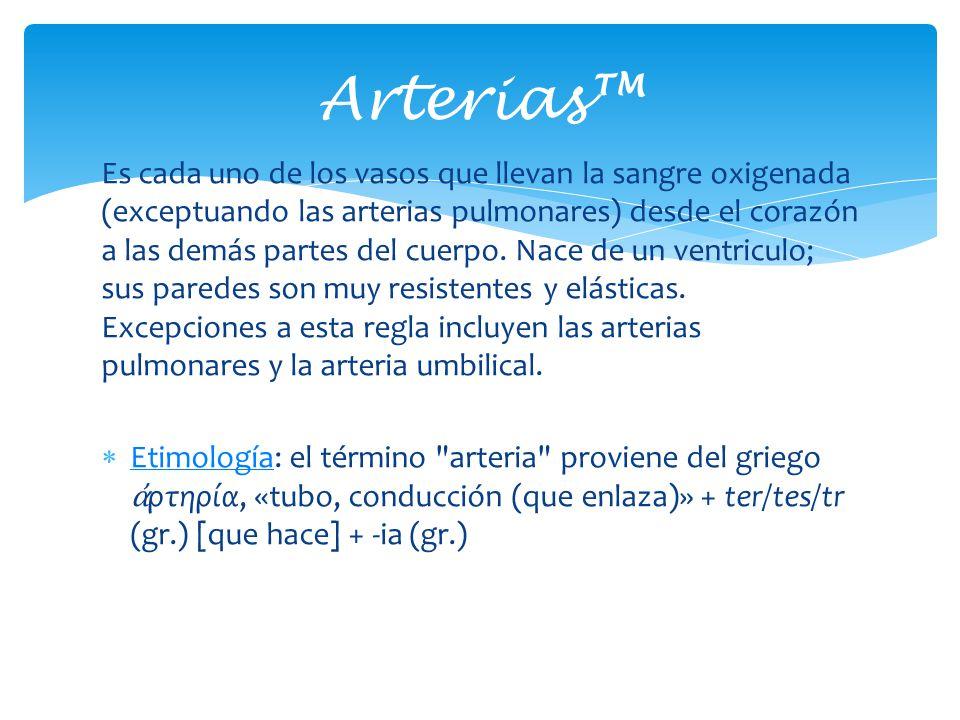Arterias™