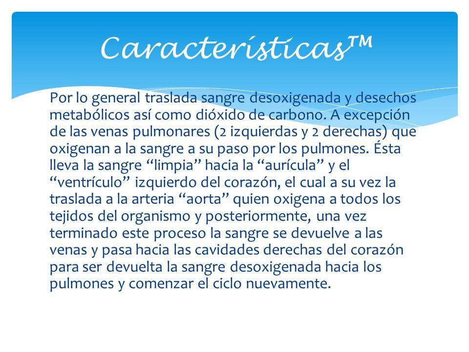 Características™