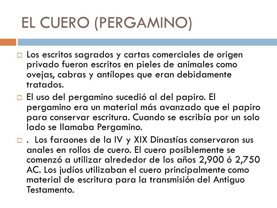 EL CUERO (PERGAMINO)