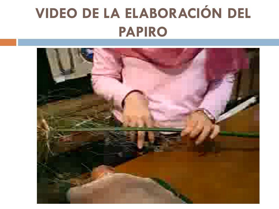 VIDEO DE LA ELABORACIÓN DEL PAPIRO
