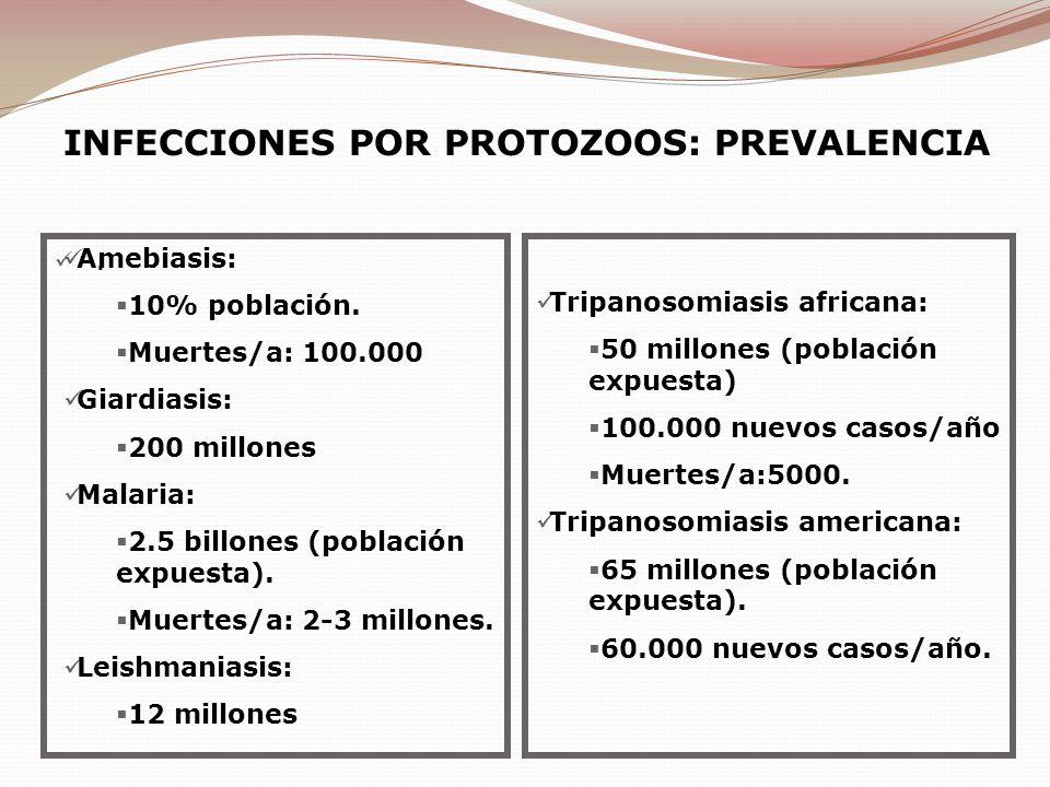 INFECCIONES POR PROTOZOOS: PREVALENCIA