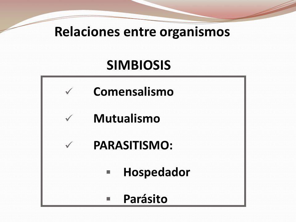 Relaciones entre organismos