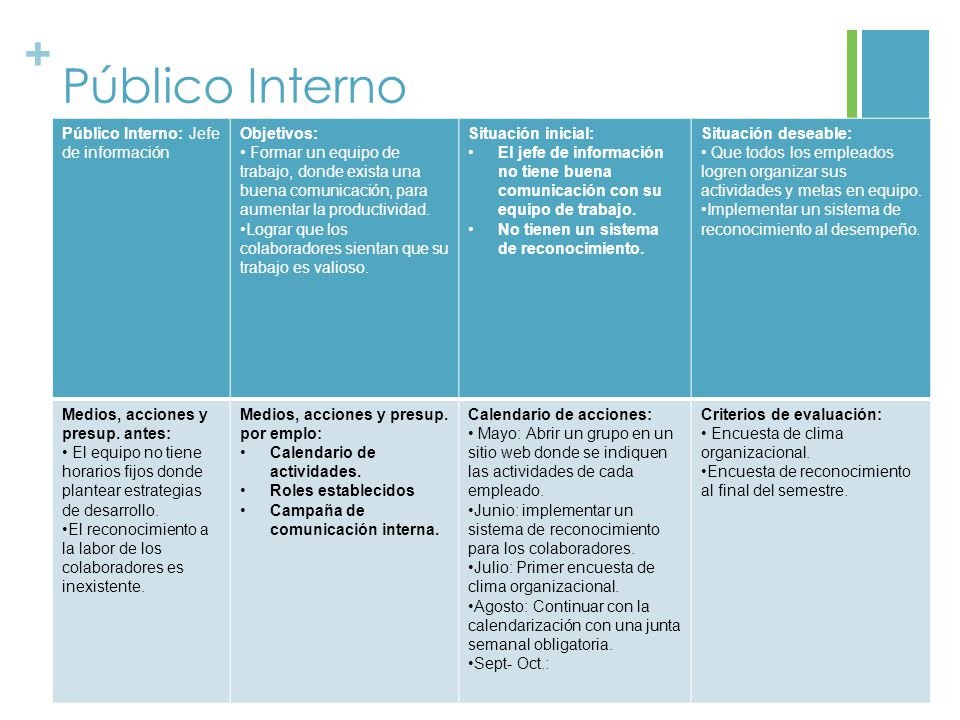 Público Interno Público Interno: Jefe de información Objetivos: