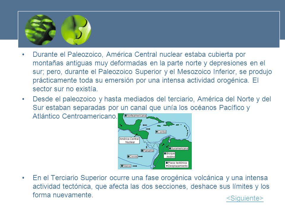 Durante el Paleozoico, América Central nuclear estaba cubierta por montañas antiguas muy deformadas en la parte norte y depresiones en el sur; pero, durante el Paleozoico Superior y el Mesozoico Inferior, se produjo prácticamente toda su emersión por una intensa actividad orogénica. El sector sur no existía.