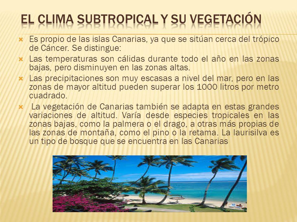 EL CLIMA SUBTROPICAL Y SU VEGETACIÓN