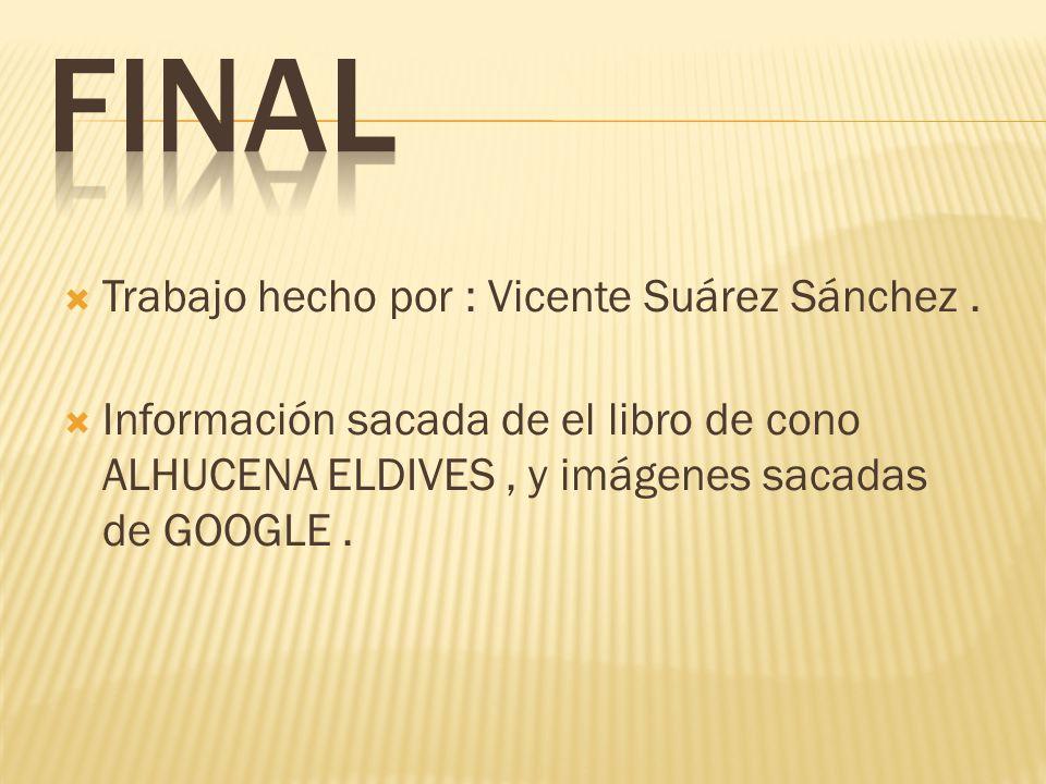 FINAL Trabajo hecho por : Vicente Suárez Sánchez .