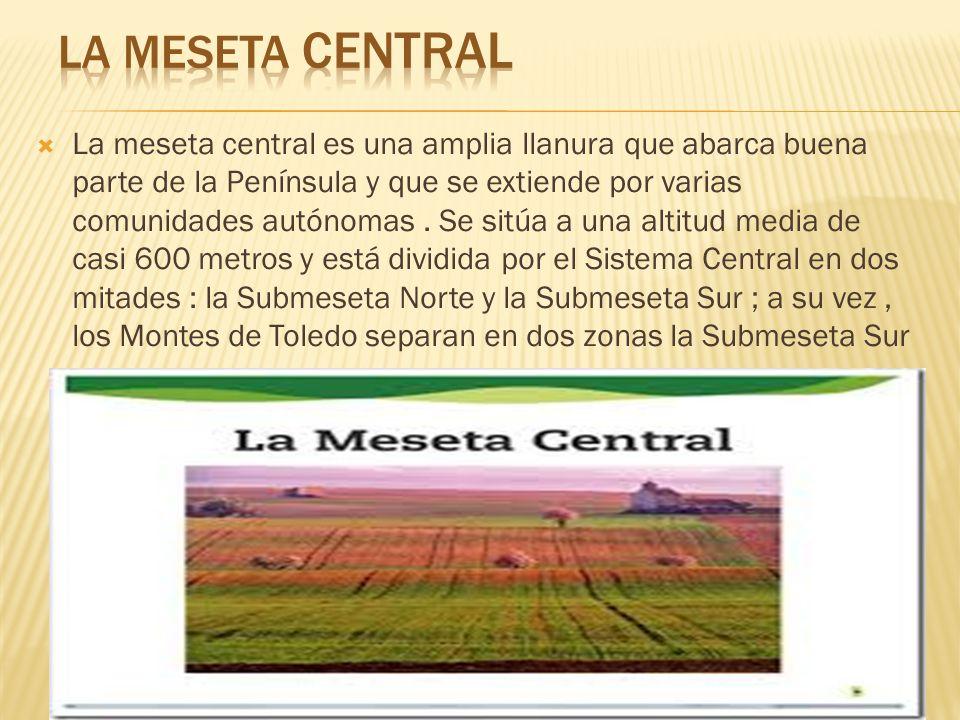LA MESETA CENTRAL
