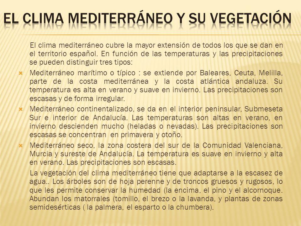 EL CLIMA MEDITERRÁNEO Y SU VEGETACIÓN